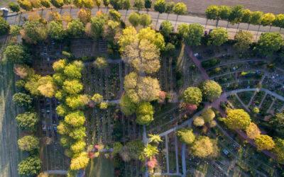 Friedhof Mooskamp