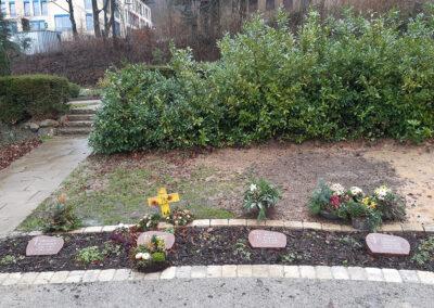 Wittekindshof Grabart Erdbestattung Blumenwiese